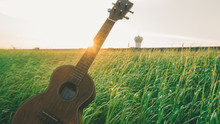 Guitar In The Grass