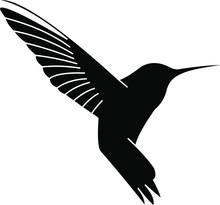 Hummingbird Logo Design Colibr...
