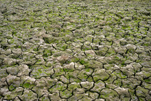 Dry River Bed During Drought