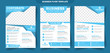 Business fitness Flyer set blue soft color vector design corporate template design for annual report company leaflet cover
