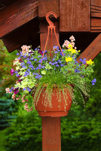 Decorative Flowers In Hanging ...