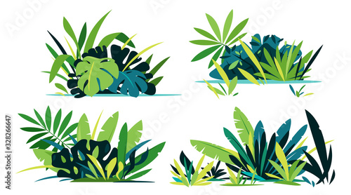 Decorative compositions of different jungle plants on ground, group of green pla Fototapet