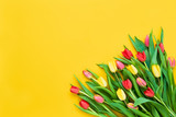 Fototapeta Tulipany - Bouquet of red and yellow tulips on bright yellow background. Beautiful greeting card. Holidays concept. Copy space, top view