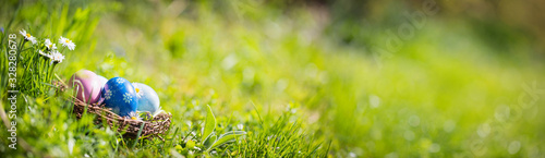 Fototapeta Nest with easter eggs in grass on a sunny spring day - Easter decoration, banner, panorama, background obraz