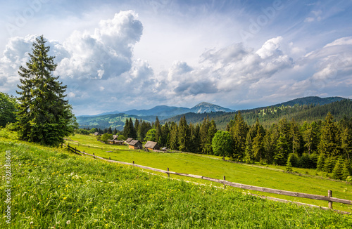 Bewitching beautiful summer landscape Canvas Print