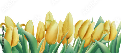 Yellow watercolor tulip flowers with green leaves. Banner
