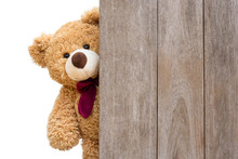 Brown Cute Teddy Bear Sneaked ...