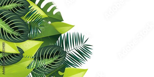 tropical illustration background