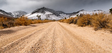 Low Perspective Of Dirt Road In Mojave Desert California With Snow Capped Mountains In The Background