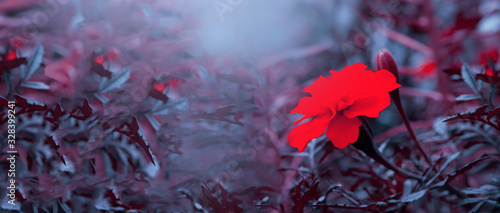 Photo Expressive colorful natural floral abstract background