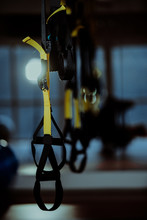 TRX Straps In Modern Gym In Ye...