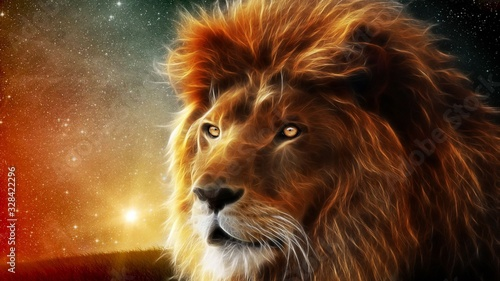 lion and lioness Canvas Print