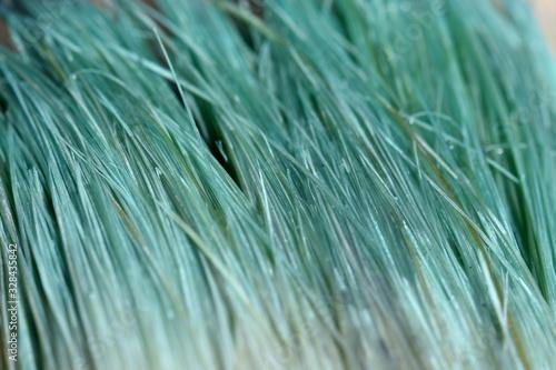 Photo Aqua menthe blue green macro texture of painter's brush disheveled, tousled fibers