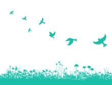 野原と飛ぶ鳥