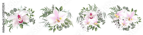 Fototapeta flowers orchid  obraz