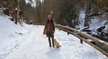 Urlaub Mit Hund In Den Alpen