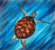 Watercolor Illustration Of  A Colorful Sea Turtle Swimming In The Vivid Turquoise Sea