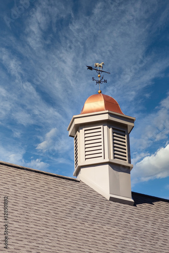 Fototapeta A cupola with copper roof and weather vane on a roof under a clear blue sky
