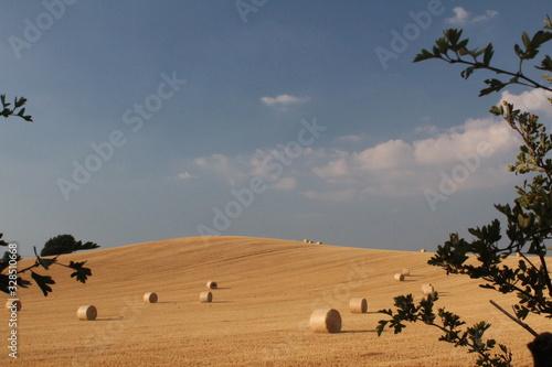 Photo Round bales of hay in rural field in summer in England West Yorkshire, Britain U