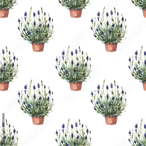 Fototapeta lavender in a flower pot pattern seamless twig plants flora spring frame postcard watercolor purple lilac aromatherapy flowers on a white background obraz