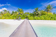Maldives perfect paradise beach tropical island background. Beautiful palm trees, jetty beach landscape mood blue sky blue sea luxury travel summer holiday concept website design zen inspirational