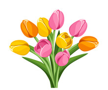 Vector Bouquet Of Pink, Orange And Yellow Tulip Flowers Isolated On A White Background.