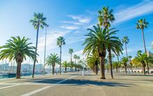 Promenade In The City Of Barce...
