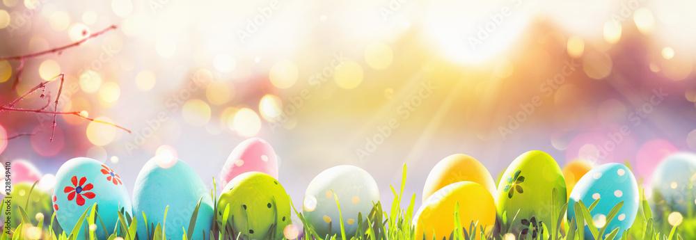 Fototapeta Easter Eggs With Fresh Green Grass and Sun