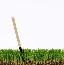 Shovel In The Grass, Dig A Gar...