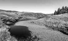River Calder, Grass And River Bed Of Stones, Lochwinnoch, Muirshiel Country Park, Scotland.