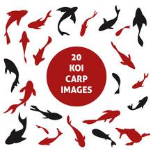 20 Japanese Koi Carp Fishes Si...