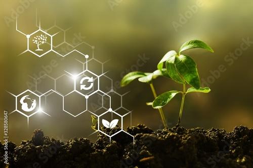 Fotografía Sustainability.