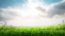 A Sunny Spring Easter Morning Background With A Fresh Green Grass Foreground.