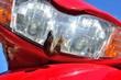 Slug on the headlight of a moped