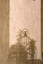 Shadows On The Wall. Shape Of ...
