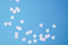 青バックの桜の花の形...