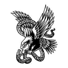 Vector Illustration Of Eagle And Snake Battle