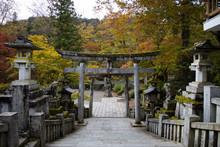 Japanese Shrine - Gateway