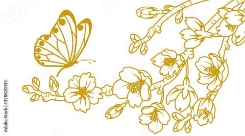 Obraz Butterfly and cherry blossom twigs - line art - fototapety do salonu