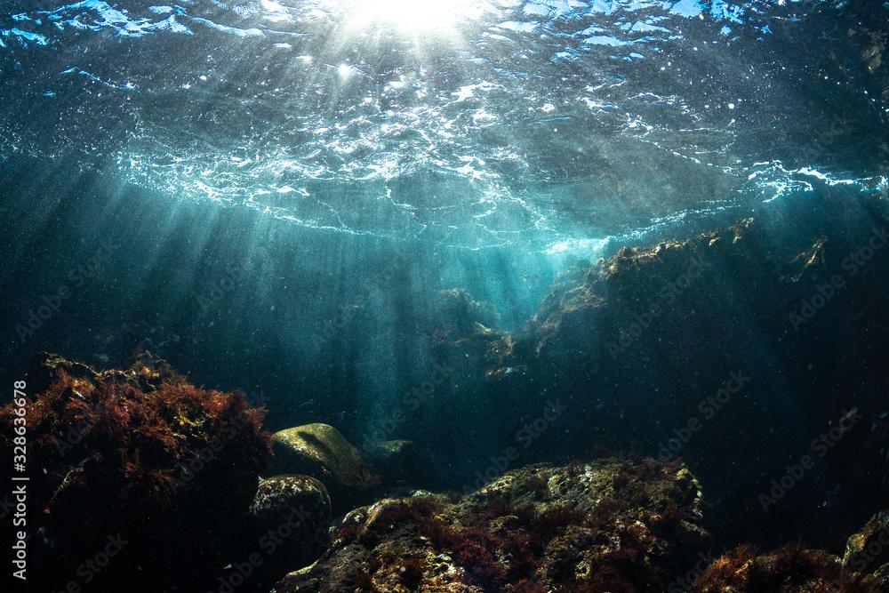 Fototapeta 伊豆の海 降り注ぐ光3