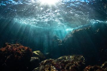 伊豆の海 降り注ぐ光3