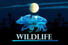 Wildlife Banner In Trendy Blue...