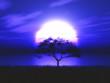 Leinwanddruck Bild - 3D tree silhouetted against a moonlit landscape