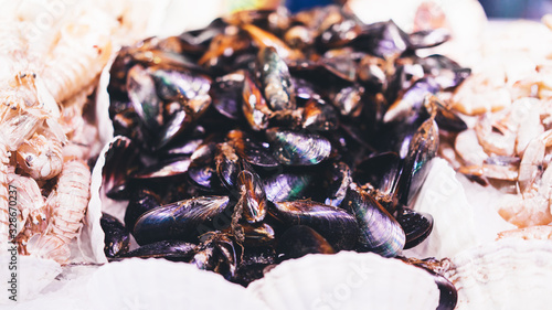 mussels on supermarket, sea food market, fresh seafood, shellfish, aphrodisiac m Canvas Print