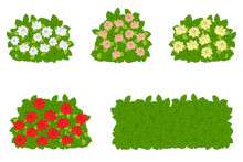 Set Of Green Bushes With Flowe...