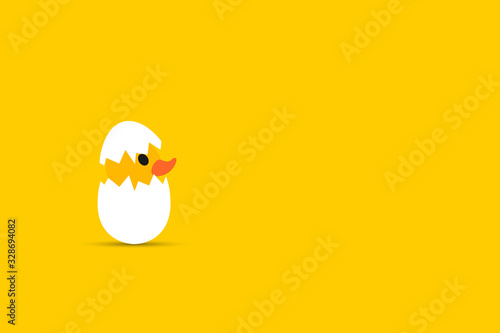 Duckling hatched, egg and yellow background.Empty space for text. Tapéta, Fotótapéta