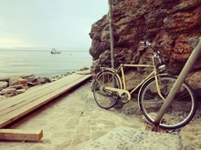 Abandoned Rusty Bicycle By The...