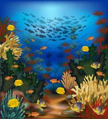 Fototapeta na wymiar Underwater beautiful landscape wallpaper with tropical fish, vector illustration