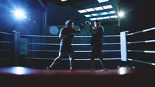 Professional Boxers With Gloves Train Fights In Indoor Boxing Ring, Dark Colors