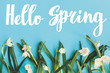 canvas print picture - Hello Spring text with first spring flowers on blue background, flat lay. Stylish floral greeting card or poster template. Springtime. Floral  border of Spring snowflake